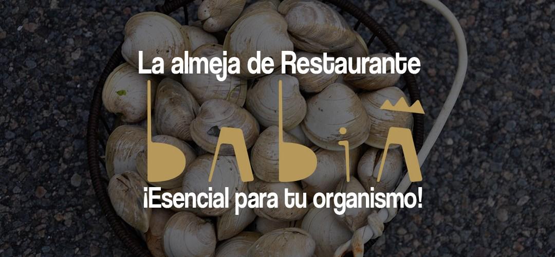 La almeja de Restaurante Babia. ¡Esencial para tu organismo!