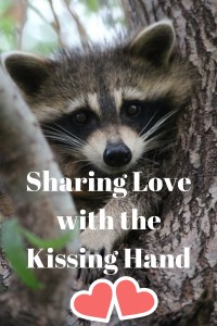 Sharing Love with the Kissing Hand