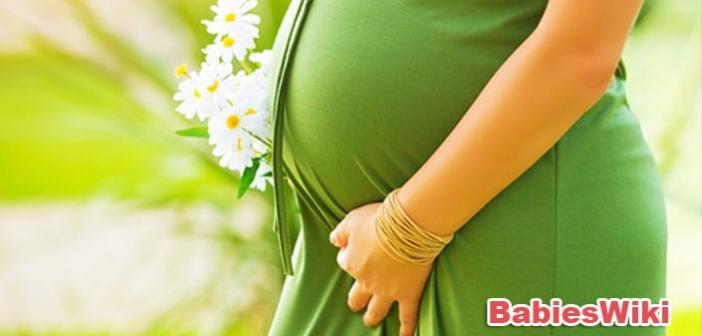 Pregnancy-blog