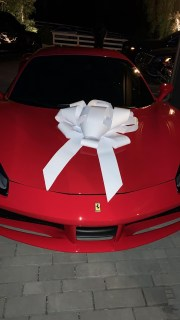 Check out Kylie Jenner's Early  birthday gift to mum, Kris Jenner
