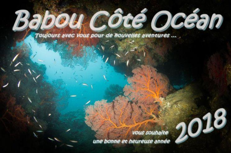 Babou Côté océan vous présente ses meilleurs vœux - Hienghène - Nouvelle Calédonie.