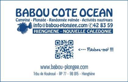 Cartes de visite Babou Côté Océan - Hienghène - Nouvelle Calédonie