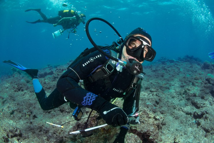Reef Check - Hienghène - 2018