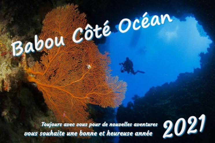 Babou Côté Océan vous souhaite une bonne et heureuse année