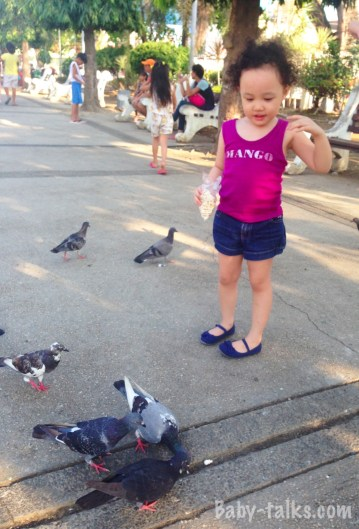 Mia and the pigeons