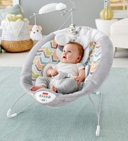 Fisher-Price My Little Snugapuppy Baby Bouncers