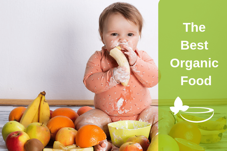 Give Your Baby The Best Organic Food