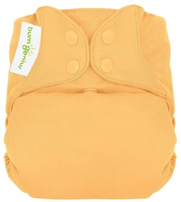 bumGenius Freetime Closure Cloth Diaper