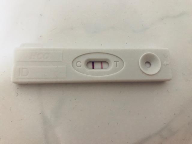 Het eerste trimester – verschillen en overeenkomsten