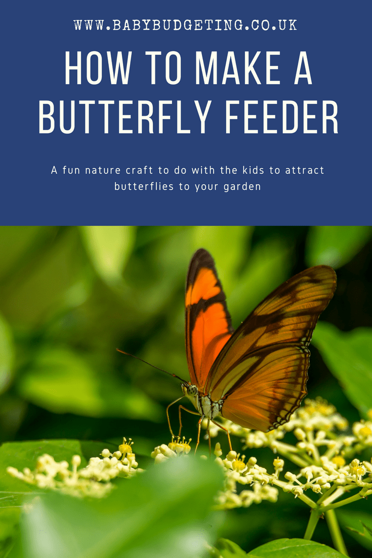 Make a butterfly feeder - A very simple nature craft for kids