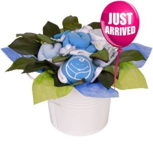 Babybuds baby gifts delivery new zealand same day auckland baby bucket malibu negle Gallery
