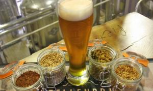 Groupn beer tasting