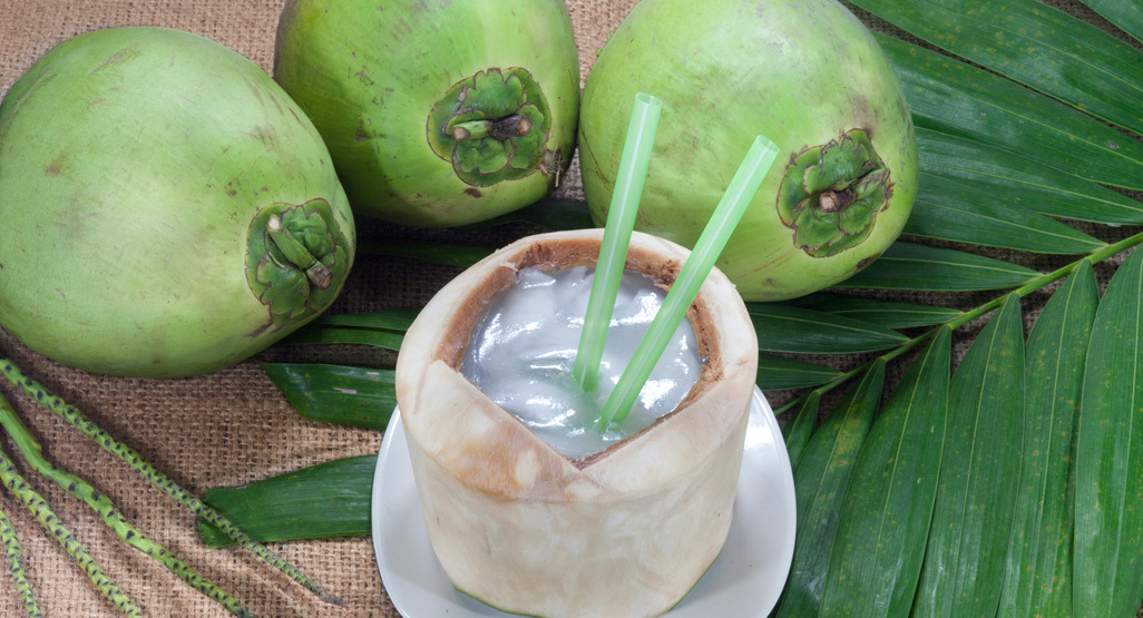 How do coconuts get water into them?
