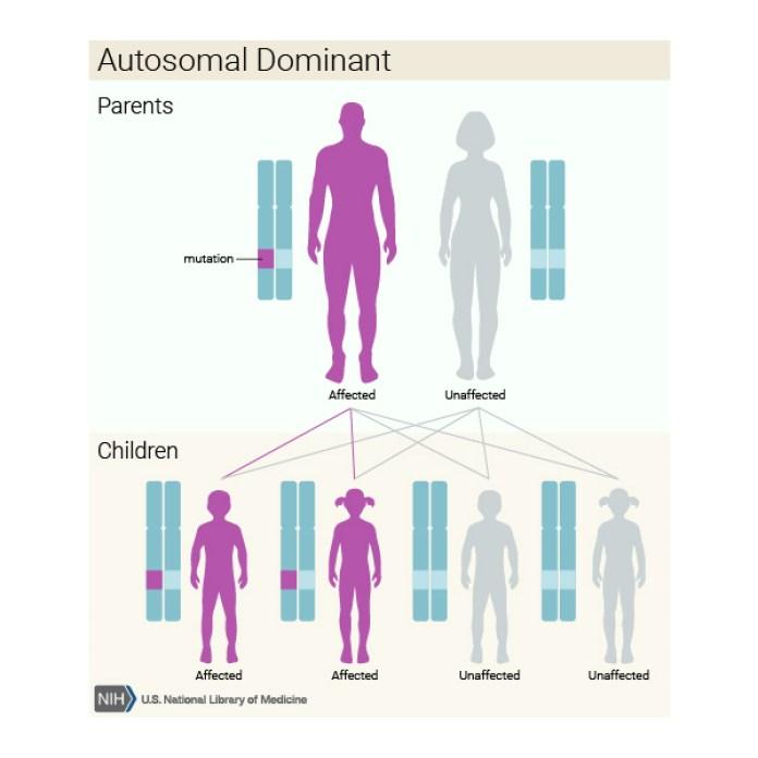 Malattie genetiche autosomiche: cosa sono, sintomi, cause e rimedi - autosomatico