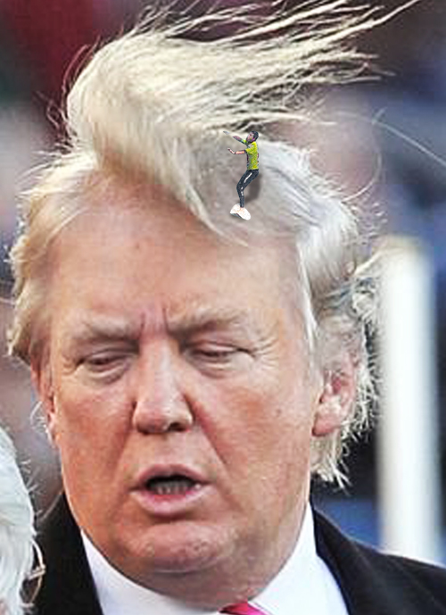 Winddonald trump wind