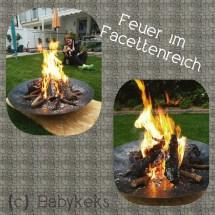 Feuer im Facettenreich