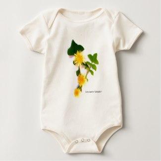 margaritas_flowers_collection_by_babylandia_body_de_bebe-r9338a7a58ae2440b888dd1cf56ccad83_jfhfi_325