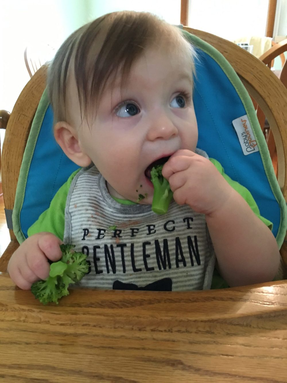 Owen started BLW at 6.5mo… now is 11mo!