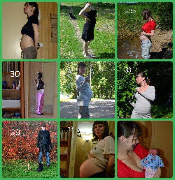 Беременность неделя за неделей) - Беременные пузики - BabyPlan