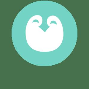 penguin babyloop