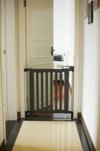 Qdos safety gate