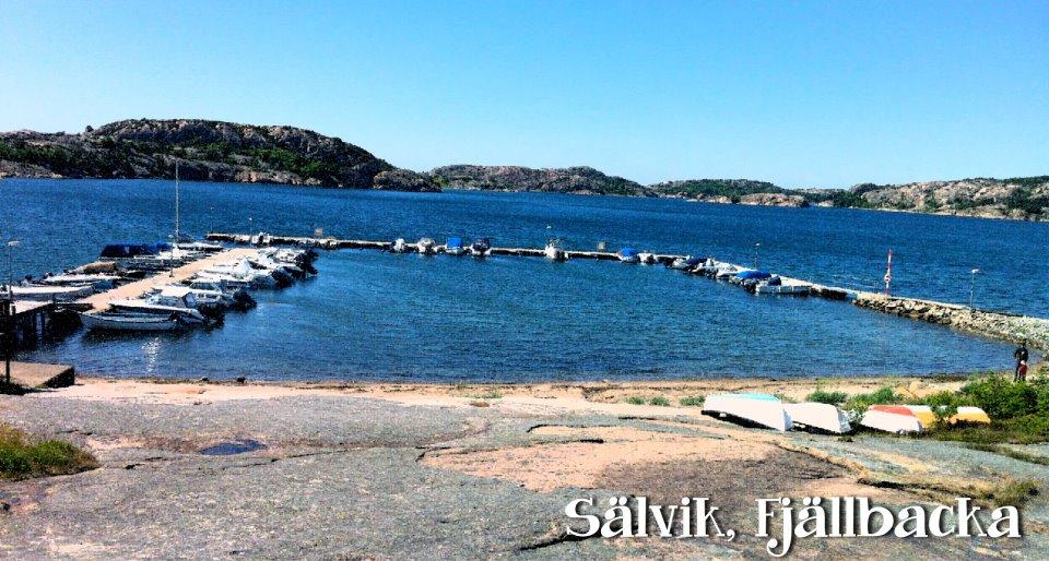 Image result for sälvik