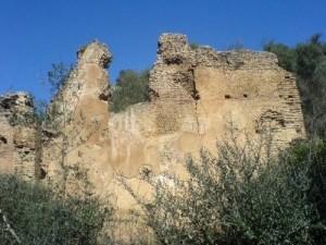 Ruines_romaine_de_Tubusuptu,_Tiklat,_El_Kseur