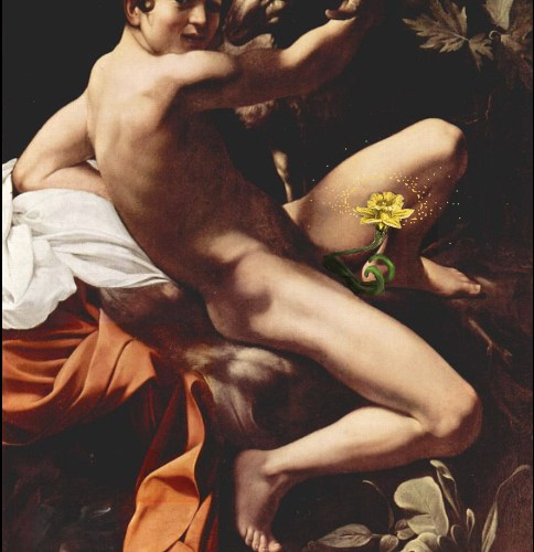 Caravaggio experience intervento Bacco Artolini