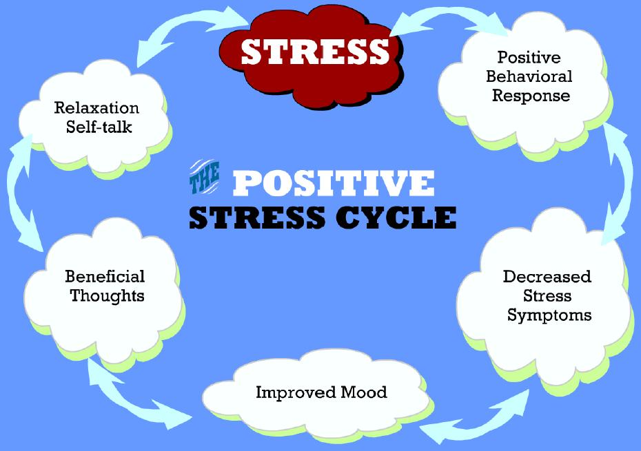 positive-stress-cycle — Back to Health Wellness Centre