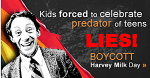 Save California Harvey Milk Hate