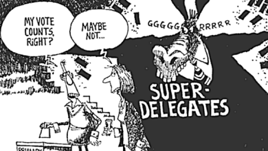 """Democratic National Committee Votes To Strip """"Superdelegates"""" of Power"""