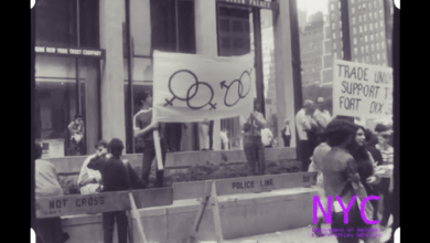 Rare 1969 NYPD Footage of the Gay Liberation Front at Anti-War Demonstration [Video & Text]