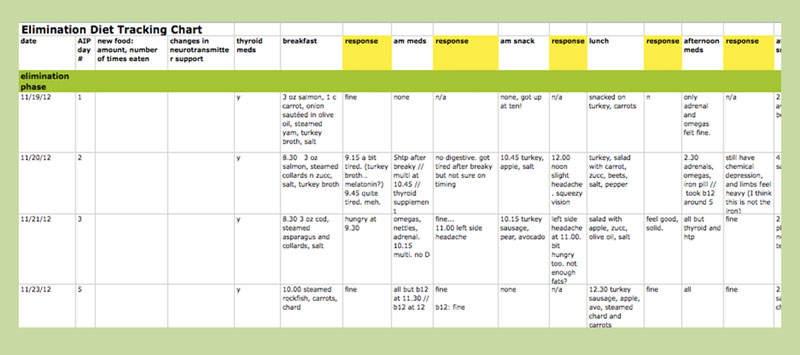 diet excel sheet