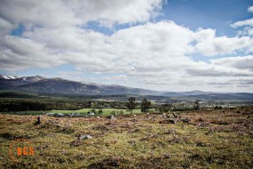 Backcountry Survival - Bushcraft and Survival Courses in Scotland