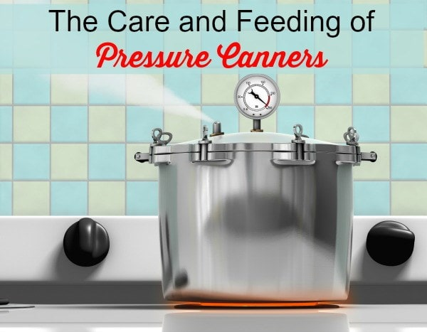 Care and Feeding of Pressure Canners | Backdoor Survival