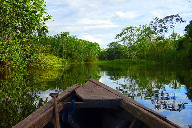 Excursion en Amazonie