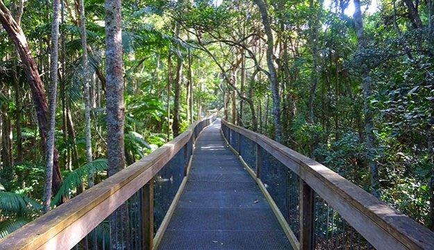 La Rainforest de Port Macquarie