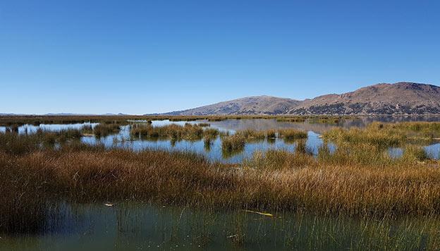Choses à faire au Pérou : Le Lac Titicaca