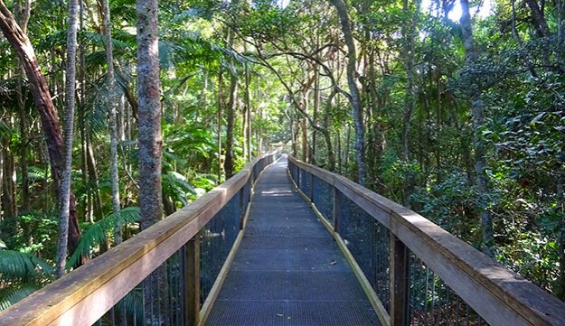 La Rainforest de Port Macquarie