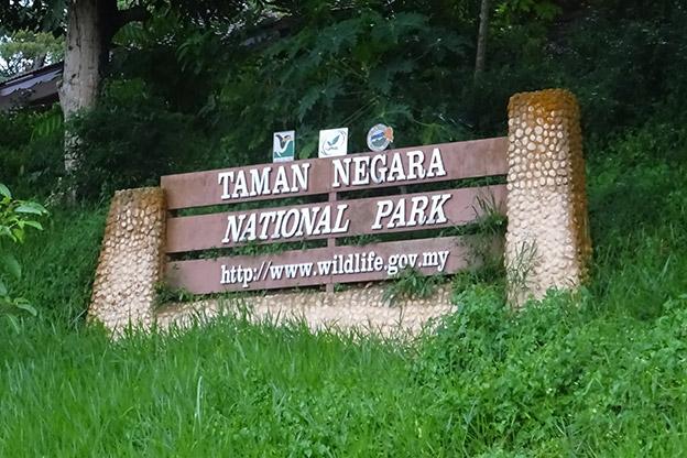 Visiter le parc de Taman Negara durant la mousson