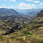 The Colca Canyon hike in Peru: condors and lama's