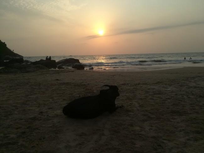 Gokarna main beach