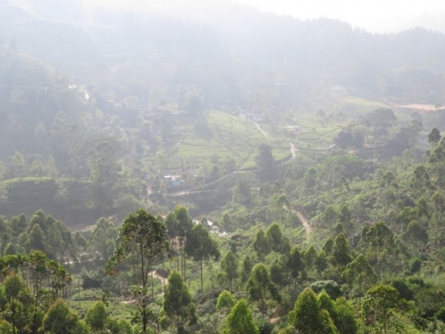 Scenery on the Kandy to Ella Train