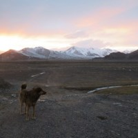 A Pamir highway itinerary: one week in the Pamir mountains