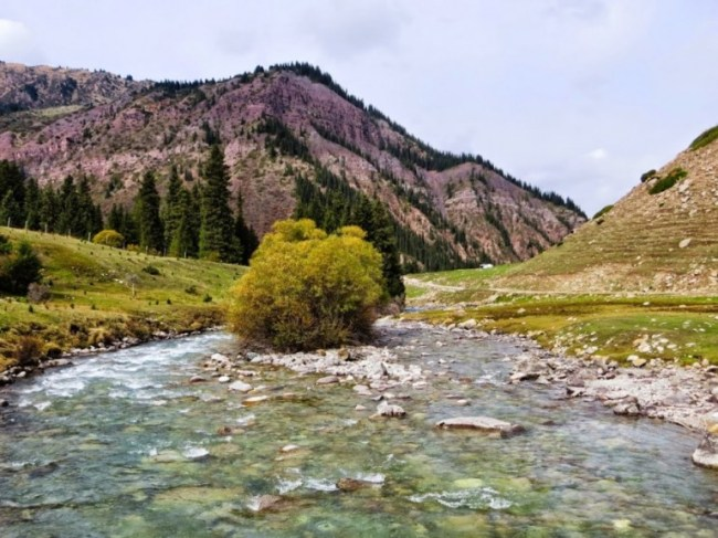 The valley of flowers trek in Kyrgyzstan