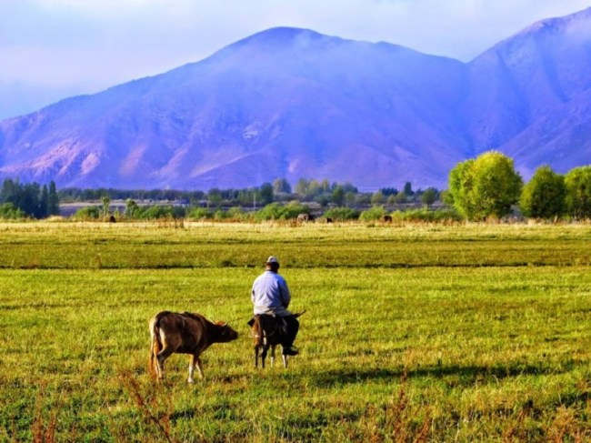 Bokonbaevo is the best place to to explore the southern shore of lake issyk kul in Kyrgyzstan