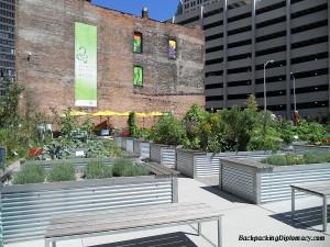 Lafayette Urban Garden in Detroit