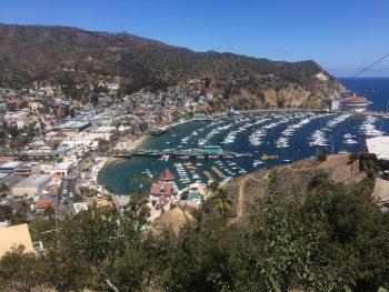Things to do in Catalina Island California