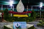 flower-show-brindavan-garden-mysore-2