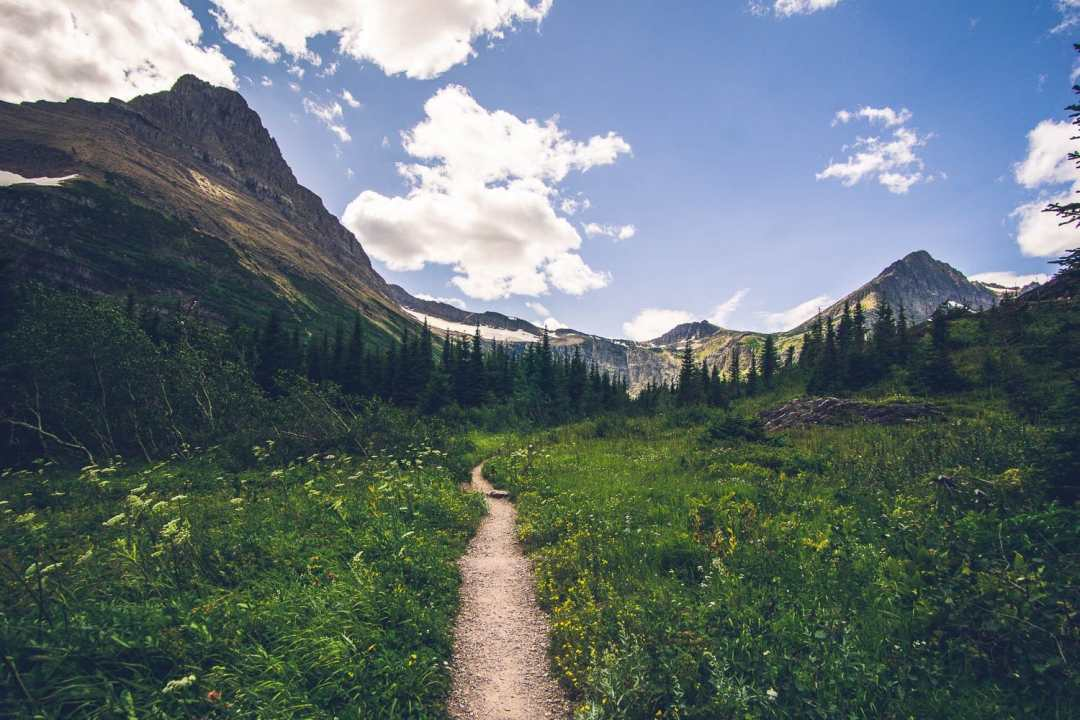 a trail in Glacier National Park